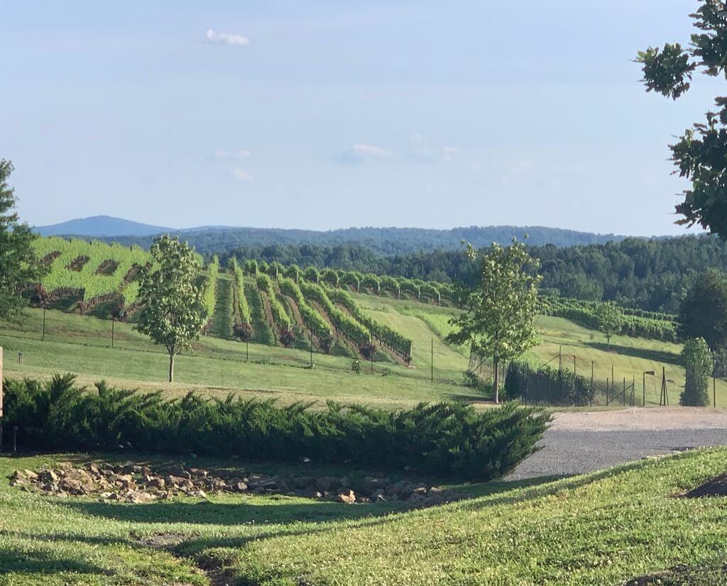 Loudoun County Wineries
